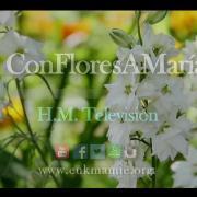 Con flores a María [720p]