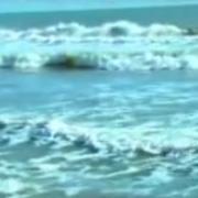 Pescador De Hombres - PADRE JONY