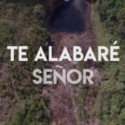 """Salmos 30 """"Acción de gracias""""  Letra Oficial Firelei Silva"""