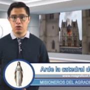 Informativo Semanal | 22.07.2020