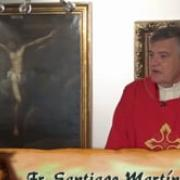 Today's homily | Passion of Saint John the Baptist | 08.29.2020 | Fr. Santiago Martín FM