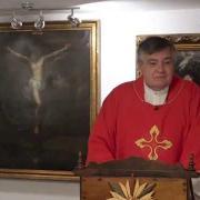 Homilía de hoy | San Andrés Dung Lac y compañeros, Mártires  | 24.11.2020 | P. Santiago Martín FM