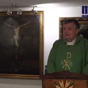 Homily, Friday of the Thirty Second Week in Ordinary Time | Fr. Santiago Martin FM | 11.13.2020