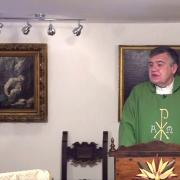 Today's homily | Friday of the First Week in Ordinary Time | Fr. Santiago Martin FM | 01.15.2021