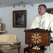 Homilía de hoy | San Ildefonso, obispo | 23.01.2021 | P. Santiago Martín FM