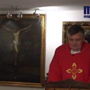 Homily, Saint Josaphat | Fr. Santiago Martin FM | 11.12.2020