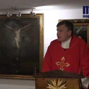 Homily, Saint Andrew Dung Lac And Companions | Fr. Santiago Martin FM | 11.23.2020