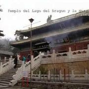 Dios en China ~ La Lucha por la Libertad Religiosa ~ 2/4
