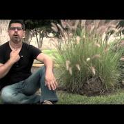 Un Amor de Locos - Marco López - Video Oficial