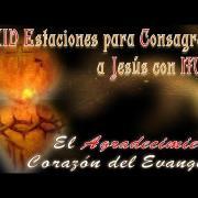 Itinerario para la consagración a Jesús y a María | 2. El agradecimiento, corazón del Evangelio