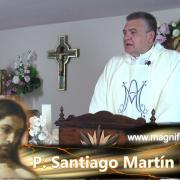 Homilía de hoy | Sábado, VII semana de Pascua | 22.05.2021 | P. Santiago Martín FM