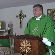 Today's Homily | Thursday of the Fourteenth Week in Ordinary Time | 07.08.2021  Fr. Santiago Martin