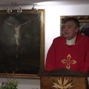 Homily, Saint Andrew | Fr. Santiago Martin FM | 11.30.2020