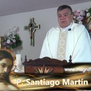 Homilía de hoy | Viernes, VII semana de Pascua | 21.05.2021 | P. Santiago Martín FM