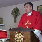 Homilía de hoy | Domingo de Ramos de la Pasión del Señor | 28.03.2021 | P. Santiago Martín FM