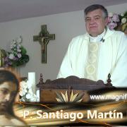 Homilía de hoy | Lunes, VII semana de Pascua | 17.05.2021 | P. Santiago Martín FM