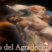 Año del Agradecimiento   35. Agradecer a María por ser consuelo de afligidos   Magnificat.tv