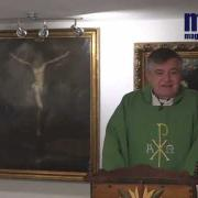 Homily, Saint Margaret of Scotland | Fr. Santiago Martin FM | 11.16.2020