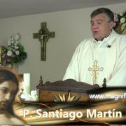 Homilía de hoy | Viernes, V semana de Pascua | 07.05.2021 | P. Santiago Martín FM