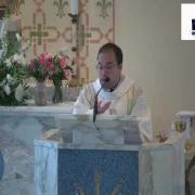 Homily| Sunday of the Seventh Week of Easter 05.16.2021| Fr. Antonio Gutiérrez FM| www.magnificat.tv