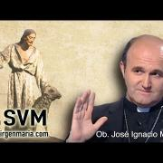 Como debe usar un católico las redes sociales, por el Obispo Munilla