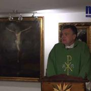 Homily, Saturday of the Thirty First Week in Ordinary Time | Fr. Santiago Martin FM | 11.07.2020