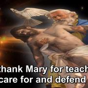 The Year of Gratitude | 40. To thank Mary for teaching us to care for and defend Jesus