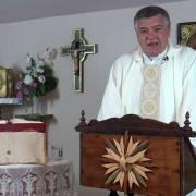 Homilía de hoy |  La Natividad de San Juan Bautista | 24.06.2021 | P. Santiago Martín FM