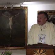 Homily, The Immaculate Conception of the Blessed Virgin Mary | Fr. Santiago Martin FM | 12.08.2020