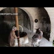 Nazareth Village: parque temático muestra cómo vivió Jesús y qué inspiró sus parábolas